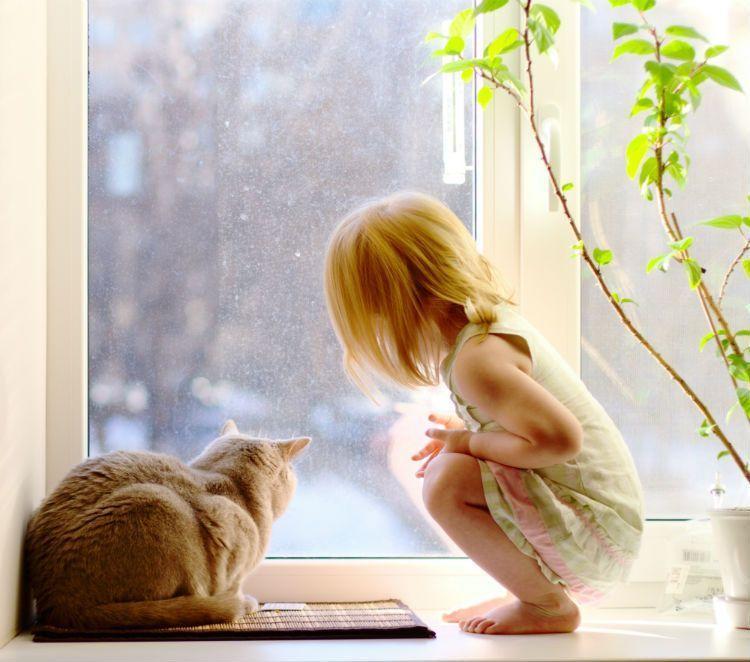 Niña y gato mirando a través de ventana Kömmerling