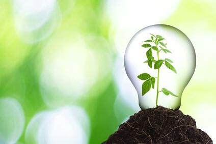 Sostenibilidad - Cuidado medioambiental - Green energy