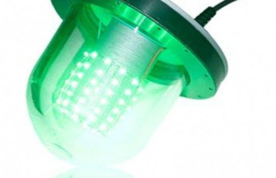 BioLed bombillas de proteínas luminiscentes