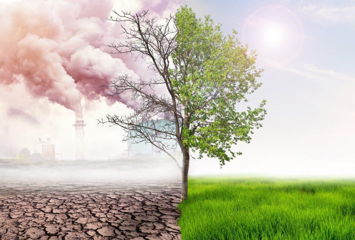 Aire limpio de contaminación ambiental